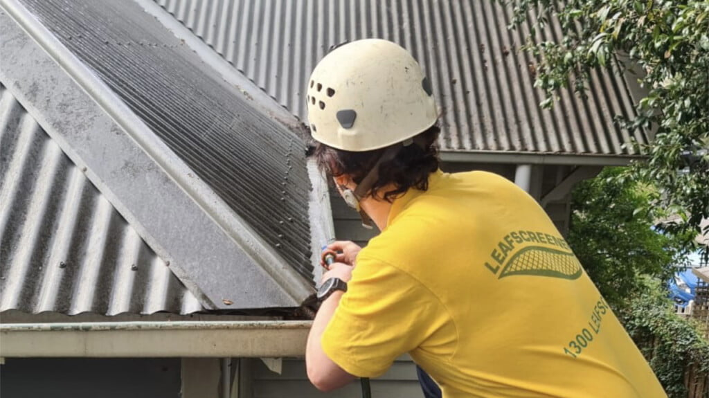 Leafscreener team at work cleaning gutters